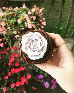 Succulent Cupcakes - decorating pro !